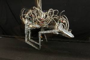 DARPA`s Cheetah Robot Bolts Past the Competition