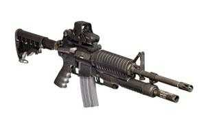 The first 50 MAUL weapons are expected to be delivered by February 2011 to the Correctional Service of Papua New Guinea.