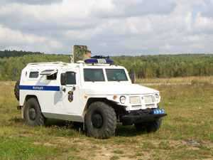 Полицейский Тигр